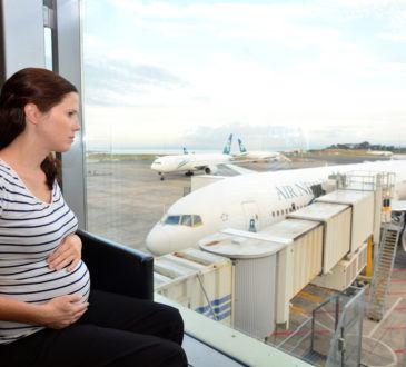 Flyga gravid